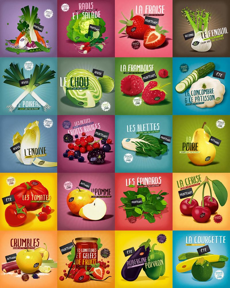 illustration produits locaux fruits et légumes